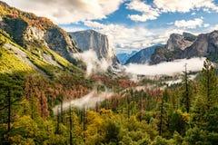 Yosemite dal på den molniga höstmorgonen Royaltyfri Bild