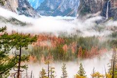 Yosemite dal på den molniga höstmorgonen Royaltyfria Foton
