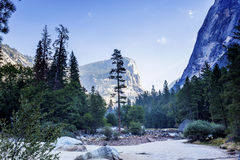 Yosemite dal, Yosemite nationalpark, Kalifornien, USA Royaltyfria Foton