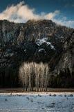 Yosemite dalsikt Fotografering för Bildbyråer