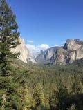 Yosemite dreamin& x27  Στοκ Εικόνες