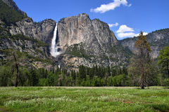 Yosemite fall Stock Photography