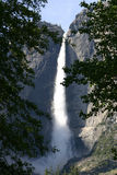Yosemite Falls – Framed by Forest Royalty Free Stock Photo