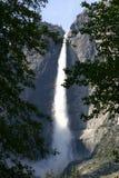 Yosemite Falls â Feld von Forest Lizenzfreies Stockfoto