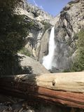 Yosemite Falls Immagini Stock Libere da Diritti
