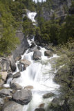 Yosemite falls Royalty Free Stock Photos