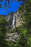 Yosemite Falls Stock Photography