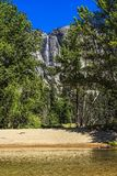 Yosemite Falls Royalty Free Stock Images