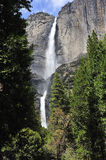 Yosemite Falls stock images