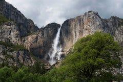 Yosemite Falls Fotografia Stock