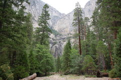 Yosemite Falls Photo stock