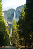 Yosemite Fall royalty free stock images