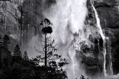 Free Yosemite Falls Royalty Free Stock Photo - 95277515