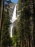 Yosemite Falls arriba Imágenes de archivo libres de regalías