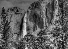 Yosemite Falls in Black and White Royalty Free Stock Image