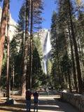 Yosemite Falls California U Immagini Stock Libere da Diritti