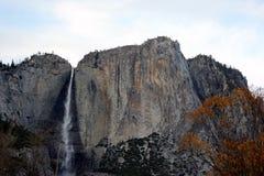 Yosemite Falls, cittadino, parco, vista di California dal ponte di oscillazione Immagine Stock