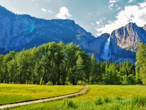 Yosemite Falls con il prato verde Fotografia Stock