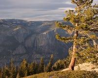 Yosemite Falls dalla cupola della sentinella Immagine Stock