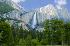 Yosemite Falls en verano en un día claro Fotos de archivo libres de regalías