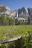 Yosemite Falls in estate Fotografia Stock