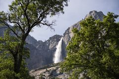 Yosemite Falls during high river flow, California. Yosemite Falls of famed Yosemite National Park, California, pours over granite cliff during high river flow Stock Photography