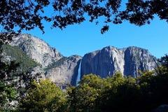 Yosemite Falls från denmil slingan, Yosemite, Yosemite nationalpark Fotografering för Bildbyråer