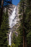 Yosemite Falls grand Photos libres de droits