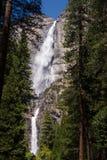 Yosemite Falls grand Photos libres de droits