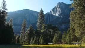 Yosemite Falls: Härlig grön dal- & bergplats arkivfilmer