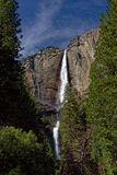 Yosemite Falls i den Yosemite nationalparken Fotografering för Bildbyråer