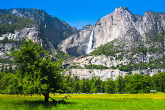 Yosemite Falls i den Yosemite nationalparken, Kalifornien Arkivfoto