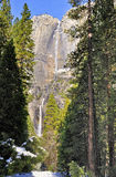 Yosemite Falls i vinter, Yosemite nationalpark Royaltyfria Foton