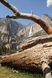 Yosemite falls Stock Photo