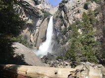 Yosemite Falls in parco nazionale di Yosemite California U.S.A. Fotografia Stock