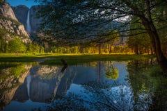 Yosemite Falls reflexion i den Merced floden Royaltyfri Fotografi