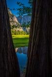 Yosemite Falls reflexion i den Merced flodlodlinjen Compositi Arkivfoton
