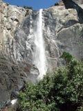 Yosemite Falls slut upp Royaltyfria Bilder