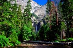 Yosemite Falls, sosta nazionale del Yosemite Fotografia Stock Libera da Diritti