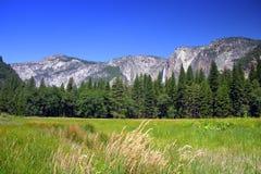 Yosemite Falls, sosta nazionale del Yosemite Immagine Stock Libera da Diritti