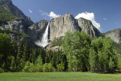 Yosemite Falls in the summer Royalty Free Stock Photo