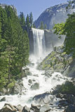 Yosemite Falls In summer On A Clear Day Royalty Free Stock Images