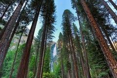 Yosemite Falls Stock Photo