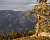 Yosemite Falls von der Hinweissymbol-Haube Stockbild
