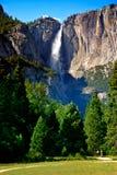 Yosemite Falls, Yosemite National Park Royalty Free Stock Images