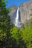 Yosemite Falls, Yosemite National Park, Sierra Nevada Mountains, California Royalty Free Stock Photography