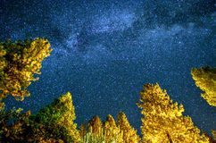 Yosemite Galaxy Stock Images