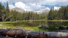Yosemite-Hochland Tuolumne-Wiesenlandschaft stockbild