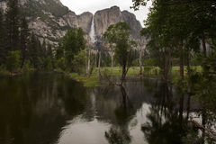 Yosemite Fall Royalty Free Stock Photography
