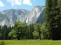 Yosemite krajobraz Zdjęcie Royalty Free